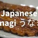 10 INCREDIBLE JAPANESE STREET FOOD UNAGI IN TOKYO JAPAN