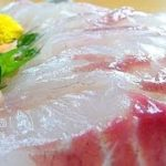 "Eating Japanese food Sashimi ""Chinu sashimi"" (ASMR)"