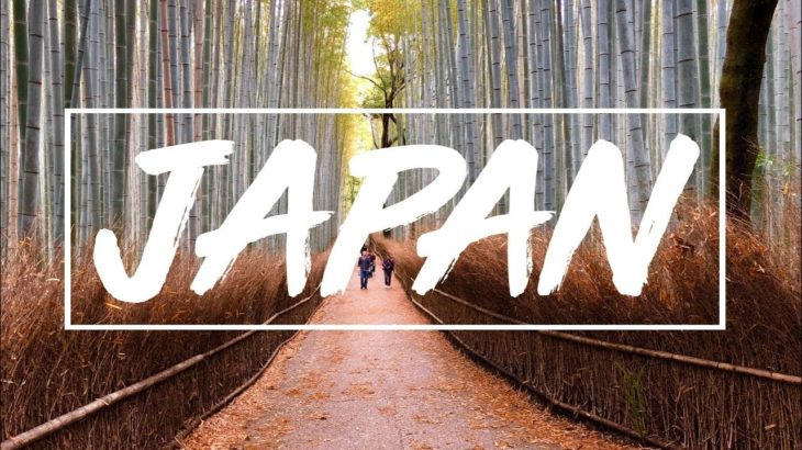 Japan Travel Video | Osaka, Kyoto & Nara