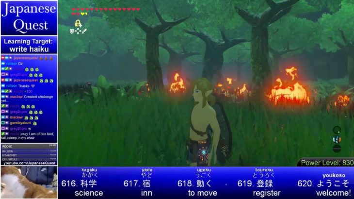 Japanese Quest: Learn Japanese from Breath of the Wild – Day 56: Trial of the Sword [ENG/日本語] Part 2
