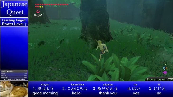 Japanese Quest: Learn Japanese from Breath of the Wild – Day 56: Trial of the Sword [ENG/日本語] Part 3