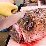 Japanese Street Food – EXOTIC SEAFOOD FISH SASHIMI Okinawa , Japan