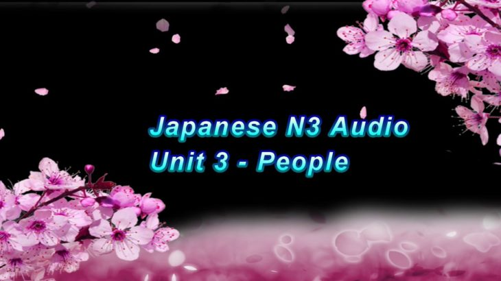 Learn Japanese Vocabulary JLPT N3 Unit 3 – People