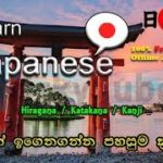 TrickyTube – Learn Japanese – ජපන් ඉගෙනගන්න පහසුම ක්රමය  – 100% Free & Offline App