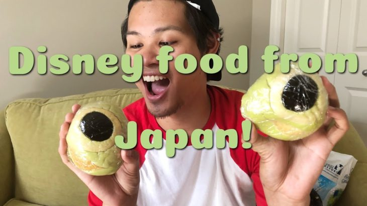 Trying out Disney Japanese food!