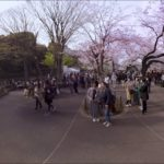 360 VR Tour of Hanami, Japan – Cherry Blossom Sightseeing | Paracosma