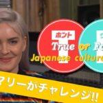 """Anne-Marie Japanese culture """"TRUE"""" or """"FALSE"""""""