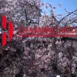Charming Holidays – Travel to Japan