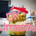DIY Umeshu ~Japanese Plum Wine~