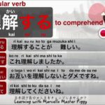 JAPANESE Verb RIKAI SURU – Learning with Marcello Master Piggy