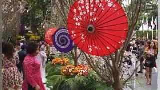 Japanese Culture Exchange Festival in Hanoi, Vietnam