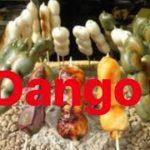 Japanese food  dango