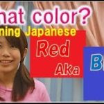 Learning Japanese and English : What Colors? in Japanese