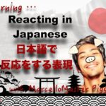 Reacting in Japanese – Learning with Marcello Master Piggy