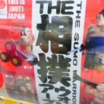 THE SUMO WARRIORS – Weird Japan Toys