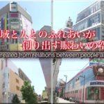 Asakusa Japan Sanjamatsuri Sightseeing Tour ROX