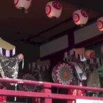 Asakusa Japan Sightseeing Tour Sanja binzasara