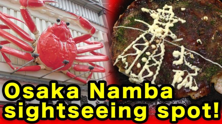 Famous food shop & sightseeing spot of osaka namba