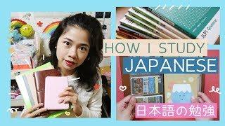 How I Learn Japanese + Study Tips (JLPT N4/N3 Level) | Rainbowholic