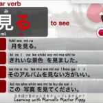 JAPANESE Verb MIRU – Learning with Marcello Master Piggy
