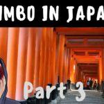 JIMBO IN JAPAN: Part 3 – Kyoto