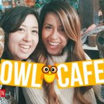 Owl Cafe + Sightseeing in Tokyo | Japan Vlog Day 4