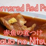 Simmered Red Perch | Japanese style 🐟 (easy)