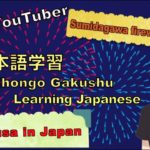 【Sumidagawa fireworks festival】 Tourism in Japan while learning Japanese