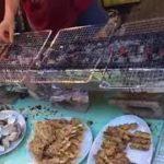japanese street food 〜 Grilled seafood 〜