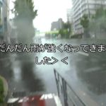 台風24号がやばい 台風21号が直撃した大阪市内の様子をレビュー