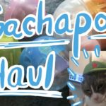 Gachapon Haul From Japan (Cat Costumes, Anime, Video Games, Etc.)