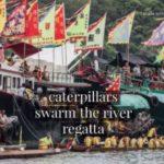 HAIKU Series #12. ASAHI SHIMBUN JAPAN Regatta Dragon Boat Festival #China #culture Borneo Sape Music