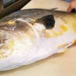 Japanese Street Food – GIANT GOLDEN POMFRET Butterfish Sashimi Okinawa Seafood Japan