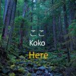 Learn Japanese 125 basic phrases with subtitles (Beginner level)