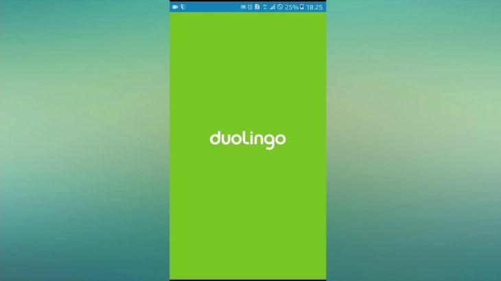 Learning Japanese with Duolingo