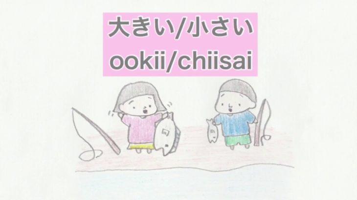 大きい / 小さい ookii / chiisai (big/small)形容詞 adjective 日本語 Japanese language ふじことふじお