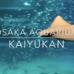 Aquarium Kaiyukan Osaka Japan Sightseeing Guide