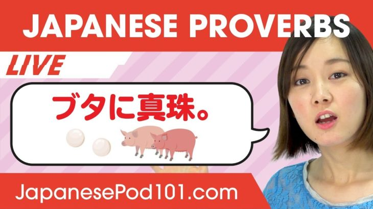 Do You Know the Most Common Japanese Proverbs? | Learn Basic Japanese