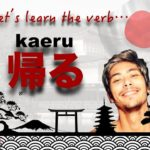 JAPANESE Verb KAERU #31 – Learning with Marcello Master Piggy