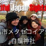 Japan Sightseeing: Takashima Metasequoia Namiki メタセコイア並木 and Shirahige 白鬚神社 Guide