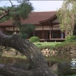 Japanese Cultural Center Celebrates 60th Anniversary