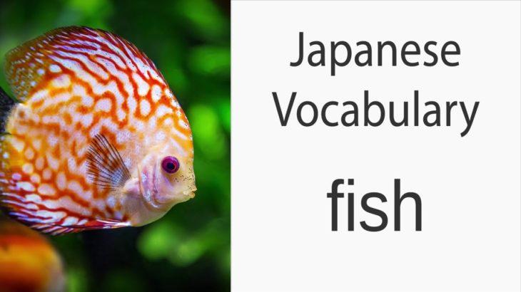 Japanese Vocabulary [Animals] Fish