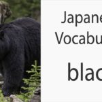 Japanese Vocabulary [Colors] Black