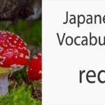 Japanese Vocabulary [Colors] Red