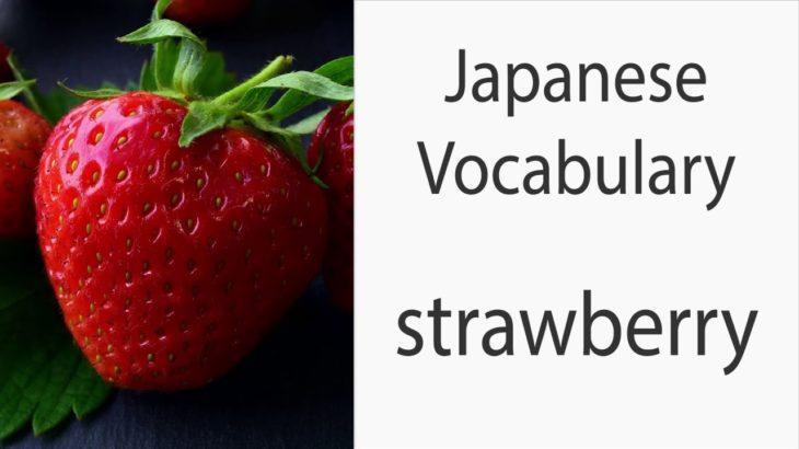 Japanese Vocabulary [Fruits] Strawberry