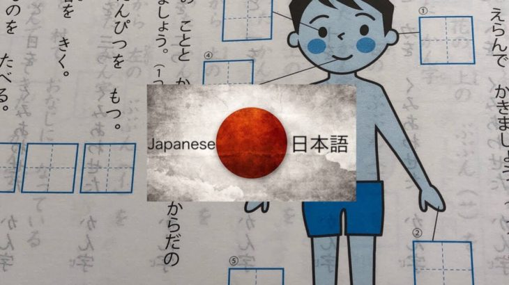 Learn Japanese | 5 Body Parts + Opposites Gr.1