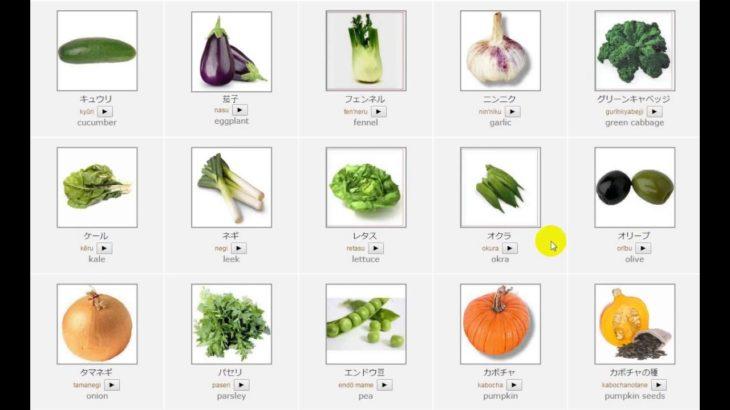 Learn japanese : Vegetables – 野菜