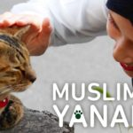 Muslim-friendly Sightseeing Spot Yanaka, the Cat Town
