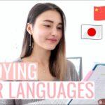 Study 4 Languages With Me!⎮Korean, Japanese, Polish, Chinese