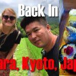 The Return to Ohara, Kyoto, Japan | Sightseeing, Food, & Adventure